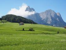 Alpe di Siusi Seiser Alm Italia Immagini Stock Libere da Diritti