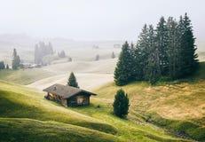 Alpe di Siusi Seisser Alm 免版税图库摄影