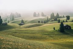 Alpe di Siusi Seisser Alm royalty free stock photo