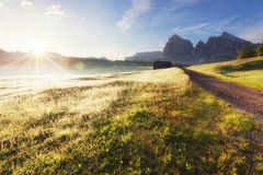 Alpe di Siusi at sunny morning Stock Photos