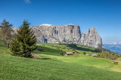 Alpe di Siusi with a view of the Schlern Royalty Free Stock Photography