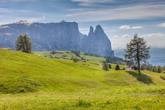 Alpe di Siusi with a view of the Schlern Royalty Free Stock Image