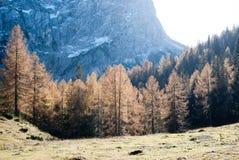 Alpe Durchlauf Lizenzfreie Stockbilder