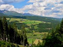 Alpe-Vista austriaca dal modo sul Fanningberg Fotografia Stock