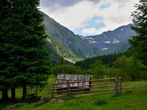 Alpe-prospettiva austriaca sulla falciatura in valle. Immagine Stock Libera da Diritti