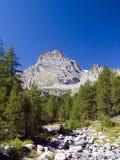 Alpe Veglia e leone del monte Fotografia Stock