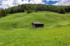 Alpe verde di estate con un cottage nelle alpi dell'Austria Fotografia Stock