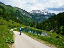 Alpi-giù austriache da Konigalm Fotografia Stock