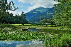 Alpe-vista austriaca sulla piscina naturale in città Gaschurn immagini stock libere da diritti