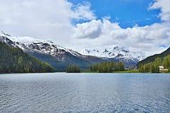 Alpe-vista svizzera del lago Champfer Immagini Stock Libere da Diritti
