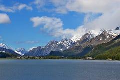 Alpe-vista svizzera del lago di Silvaplana Fotografia Stock Libera da Diritti