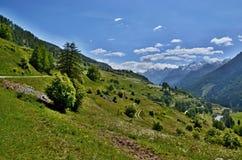 Alpe-vista svizzera di Guarda Immagine Stock