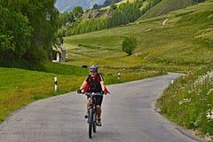 Alpe-vista svizzera sul ciclista sulla strada della montagna sopra Ardez Immagine Stock Libera da Diritti