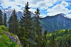 Alpe-vista svizzera sul Engadin Fotografie Stock Libere da Diritti