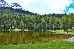 Alpe-vista svizzera sul lago Marcio Fotografia Stock