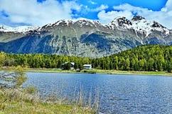 Alpe-vista svizzera sul lago Staz Immagine Stock Libera da Diritti