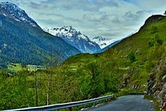 Alpe-vista svizzera sul modo giù a Ardez Fotografie Stock Libere da Diritti