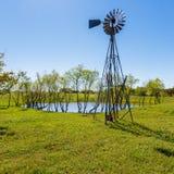 Alpeggio del Texas Immagine Stock