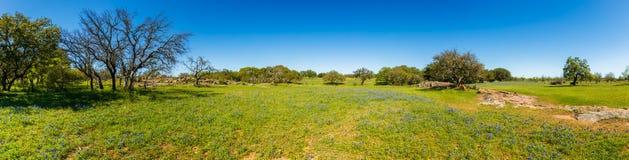 Alpeggio del Texas Fotografie Stock