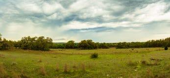 Alpeggio del Texas Fotografia Stock