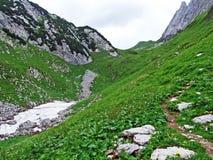 Alpejscy paśniki i łąki na skłonach Alpstein pasmo górskie w rzecznej Thur dolinie i obraz stock