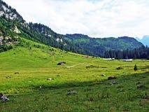 Alpejscy paśniki i łąki na skłonach Alpstein pasmo górskie w rzecznej Thur dolinie i zdjęcie stock