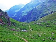 Alpejscy paśniki i łąki na skłonach Alpstein pasmo górskie w rzecznej Thur dolinie i fotografia stock