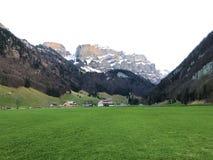 Alpejscy paśniki i łąki w Apenzellerland regionie i w Schwendebach dekatyzują dolinę zdjęcia stock
