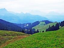 Alpejscy paśniki i łąki w Obertoggenburg regionie, Stein obraz stock