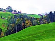 Alpejscy paśniki i łąki w Obertoggenburg regionie, Stein zdjęcie stock