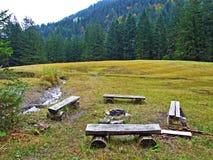Alpejscy paśniki i łąki w Obertoggenburg regionie, Stein obrazy stock
