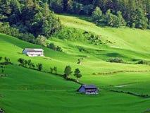 Alpejscy paśniki i łąki w Sernftal dolinie zdjęcia stock
