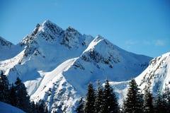 Alpejscy szczyty zakrywający z świeżym śniegiem Fotografia Stock