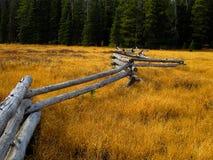 Alpejska łąka podczas łosia polowania obraz stock