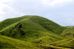 Alpejska obszar trawiasty sceneria na Qinghai Tybet plateau Zdjęcie Stock