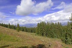 Alpejska scena w Skalistych górach, usa fotografia royalty free