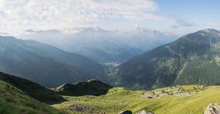 Alpejski głąbik zdjęcie stock