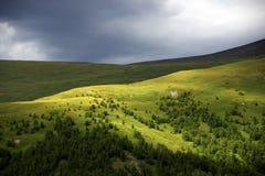 Alpejski krajobraz w Altai górach, Lipiec 2016 Zdjęcie Royalty Free