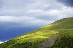 Alpejski krajobraz w Altai górach, Lipiec 2016 Obrazy Stock
