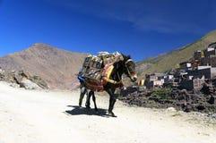 Alpejski krajobraz w atlant górach Obraz Royalty Free