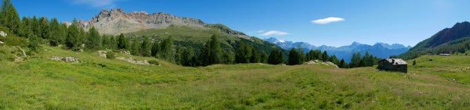 Alpejski krajobraz w lecie w Valmalenco Zdjęcia Stock