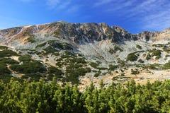 Alpejski krajobraz w parku narodowym Retezat Obrazy Royalty Free
