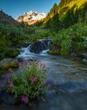 Alpejski strumień od Mt kapiszon zdjęcia stock