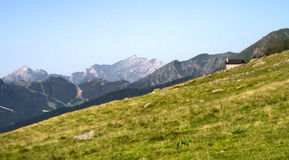 Alpejski szczyt górski Fotografia Royalty Free