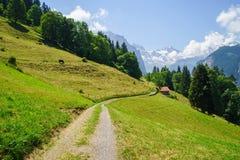 Alpejski szczytu landskape Lauterbrunnen, Jungfrau, Bernese średniogórze Alps, turystyka, podróż, wycieczkuje pojęcie obrazy stock