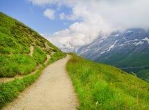 Alpejski szczytu landskape tło Jungfrau, Bernese średniogórze Alps, turystyka, podróż, wycieczkuje pojęcie obrazy royalty free