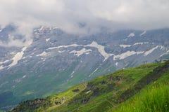 Alpejski szczytu landskape tło Jungfrau, Bernese średniogórze Alps, turystyka, podróż, wycieczkuje pojęcie obraz royalty free