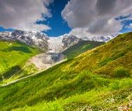 Alpejskie łąki przy stopą Tetnuldi lodowiec Obraz Royalty Free