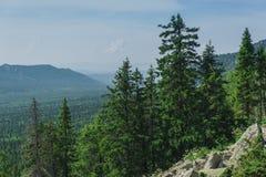 Alpejskie łąki Taganay Zdjęcia Stock