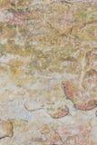 Alpejskie łąki Taganay Obrazy Stock